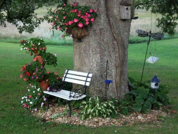 flower beds around tree 6