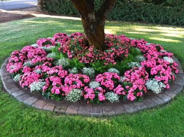 front garden landscaping 1