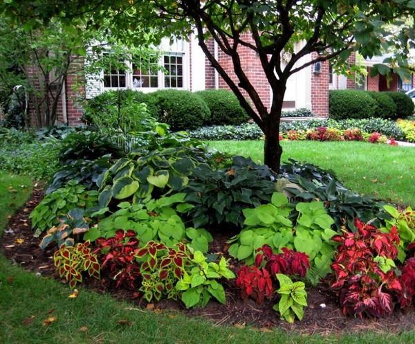 front garden landscaping 12