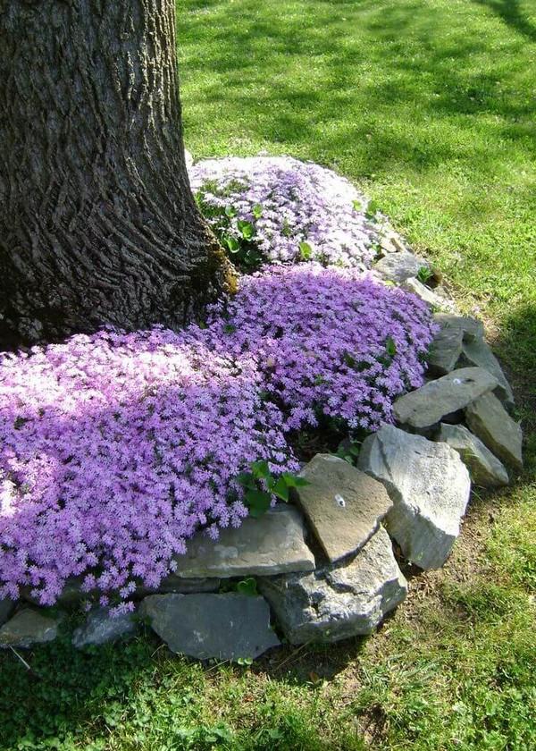 front garden landscaping 14