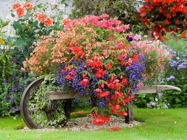 front garden landscaping 3