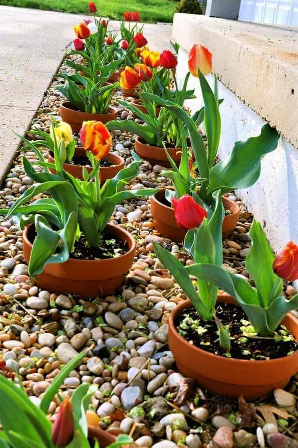 front garden landscaping 4