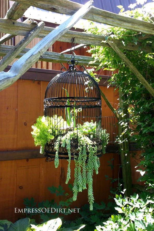 garden decor ideas 1
