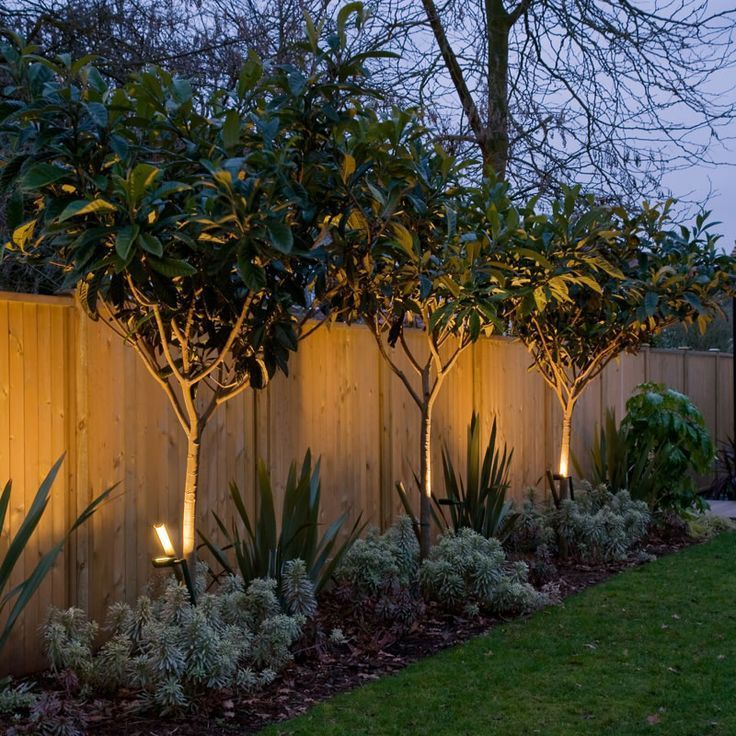 15 Superb Garden Fence Lighting Ideas
