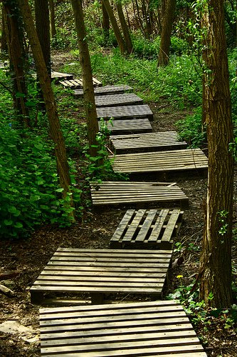 garden pathway 15