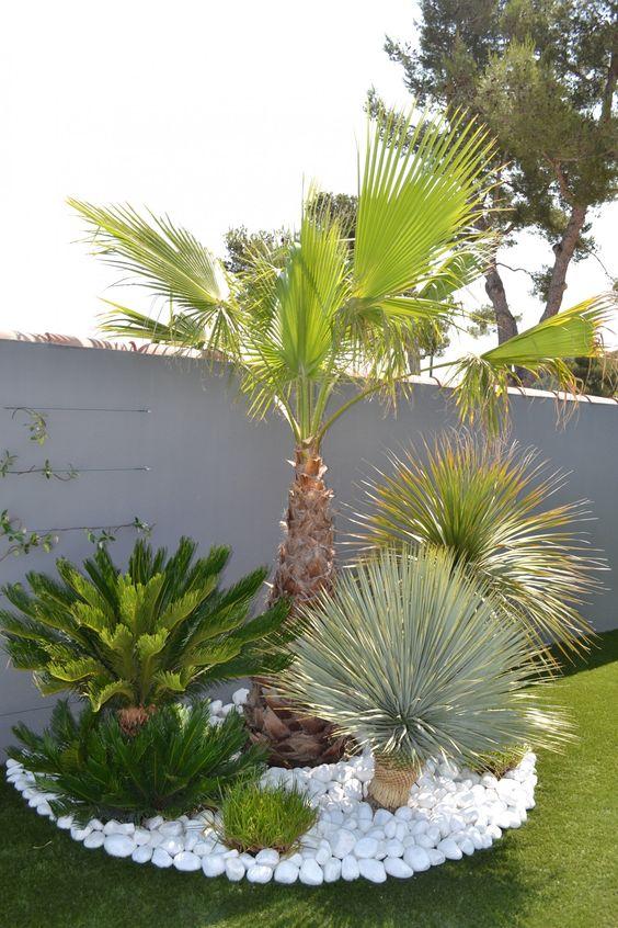 garden-pathways-ideas-12