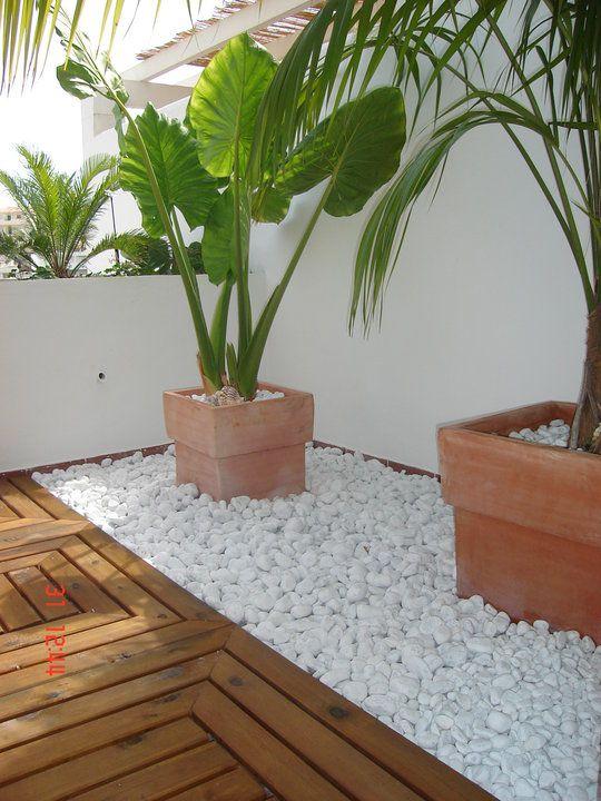 garden-pathways-ideas-17