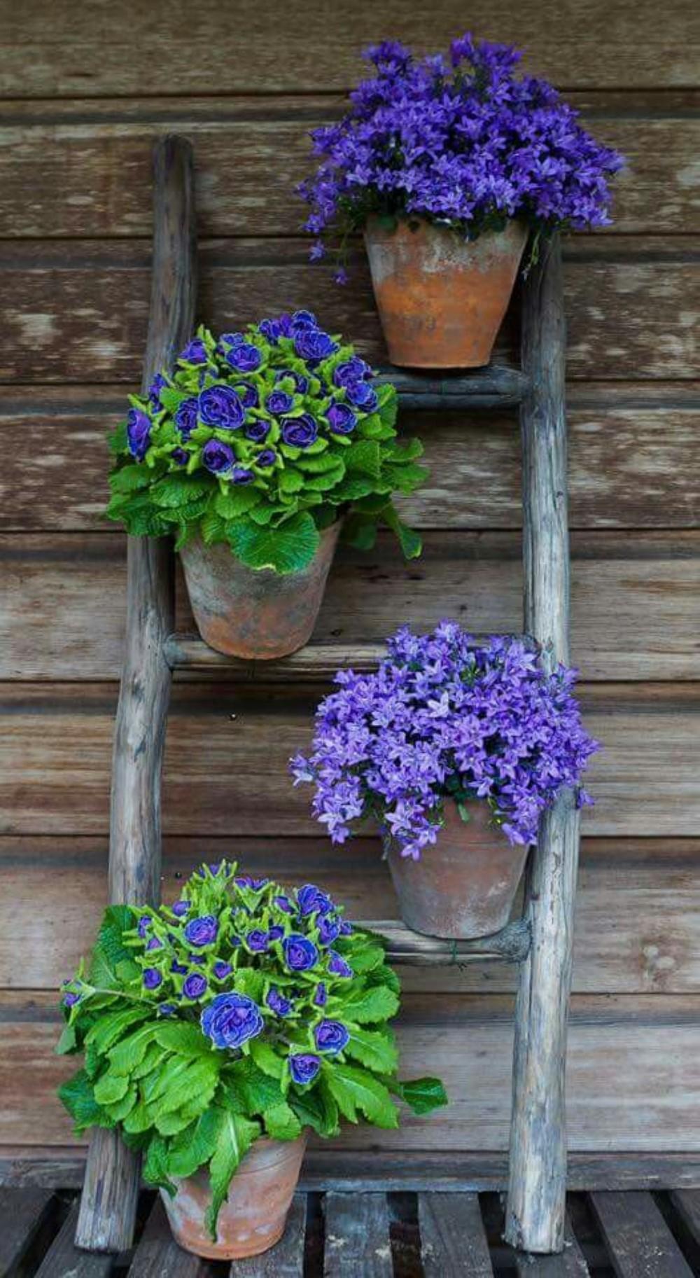 garden planter ideas 2