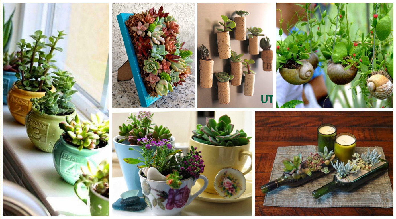 10 creative diy ideas to grow plants at home for Creative design ideas for the home