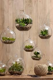 indoor gardens 15