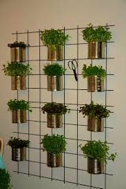 indoor gardens 16