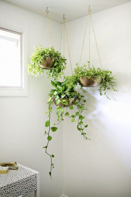 15+ Indoor Gardens That Will Make You Say WoW