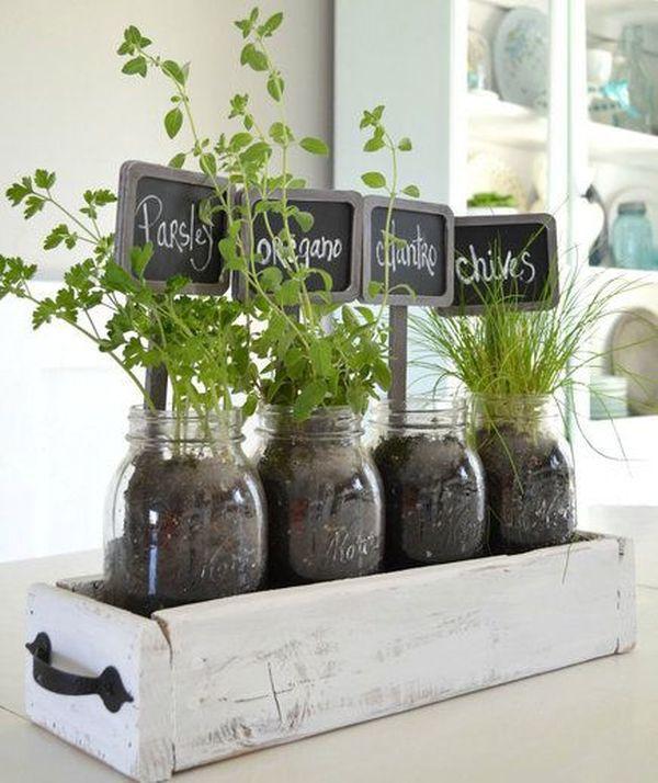 indoor herb gardens 1