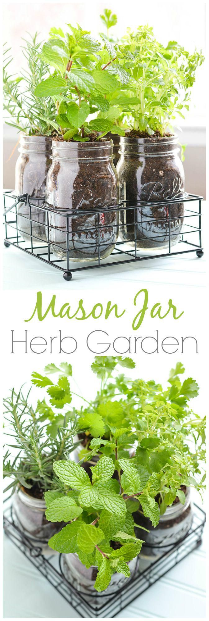 indoor herb gardens 10