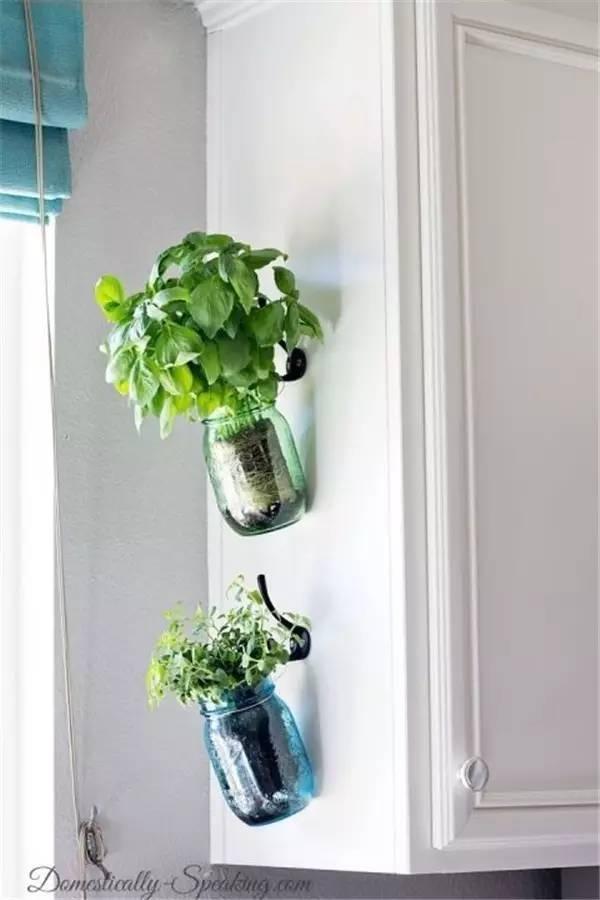 indoor herb gardens 11