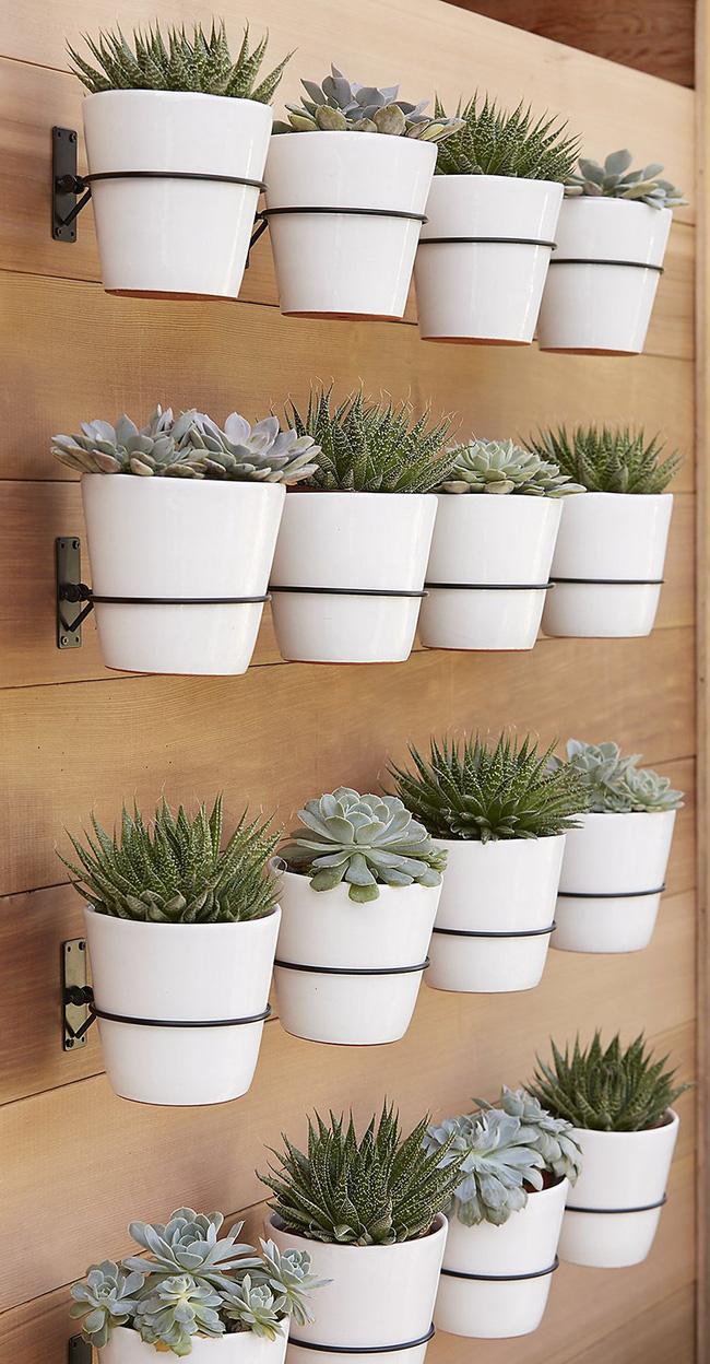 indoor herb gardens 14