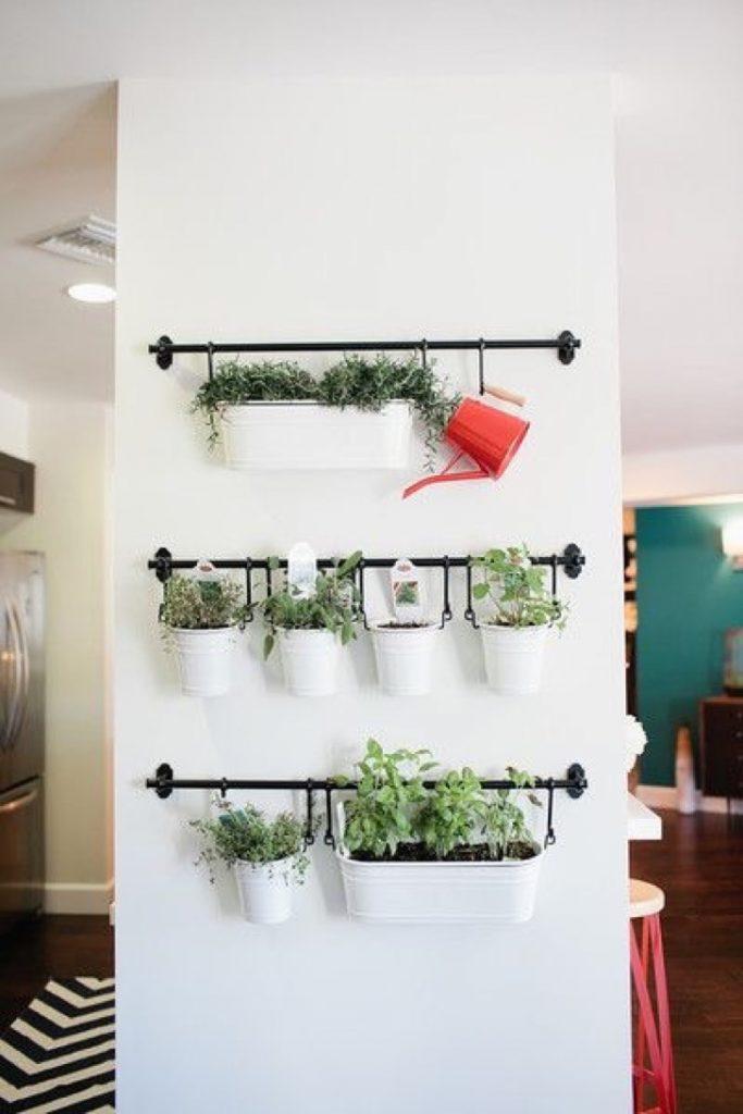 indoor herb gardens 3