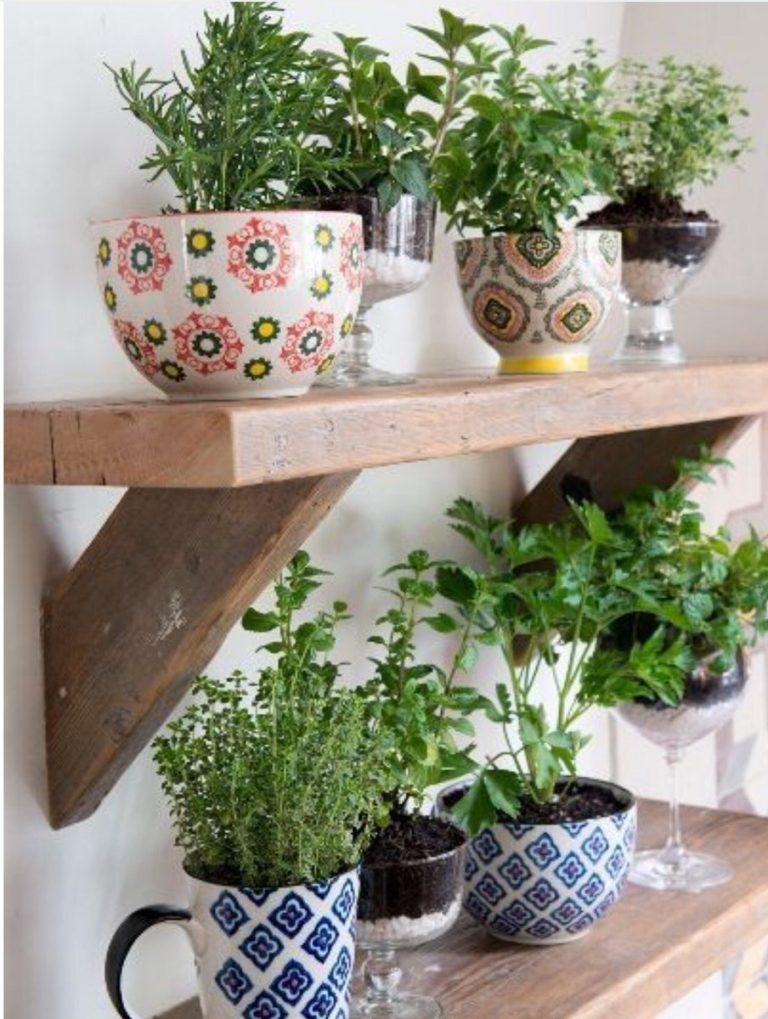 indoor herb gardens 4