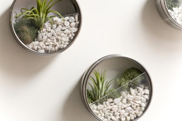 lovely-terrarium-ideas-10