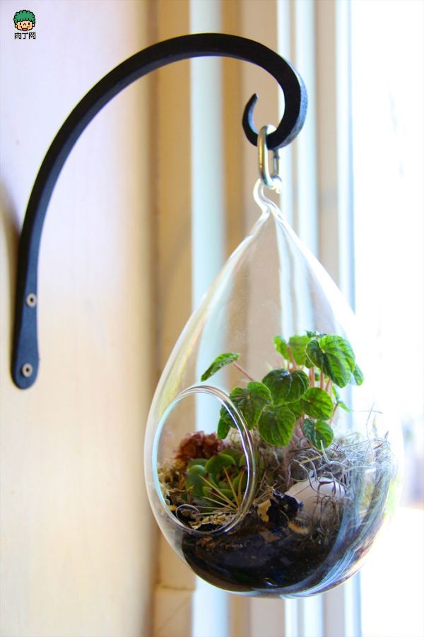 lovely-terrarium-ideas-12