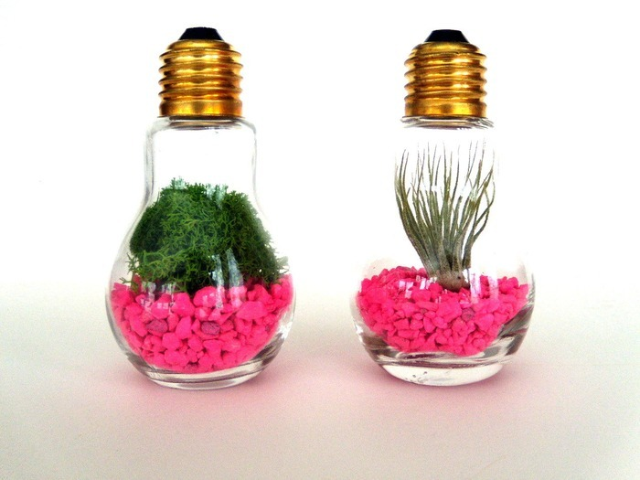 lovely-terrarium-ideas-16