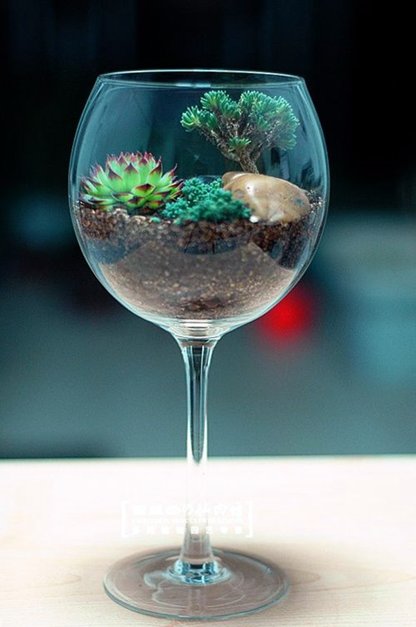 lovely-terrarium-ideas-20