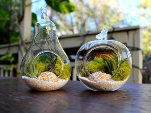 lovely-terrarium-ideas-6