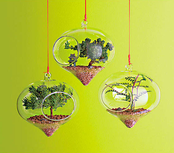 lovely-terrarium-ideas-9