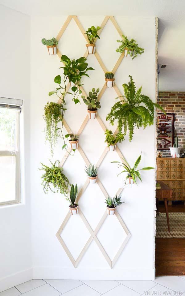 mini garden indoor 1
