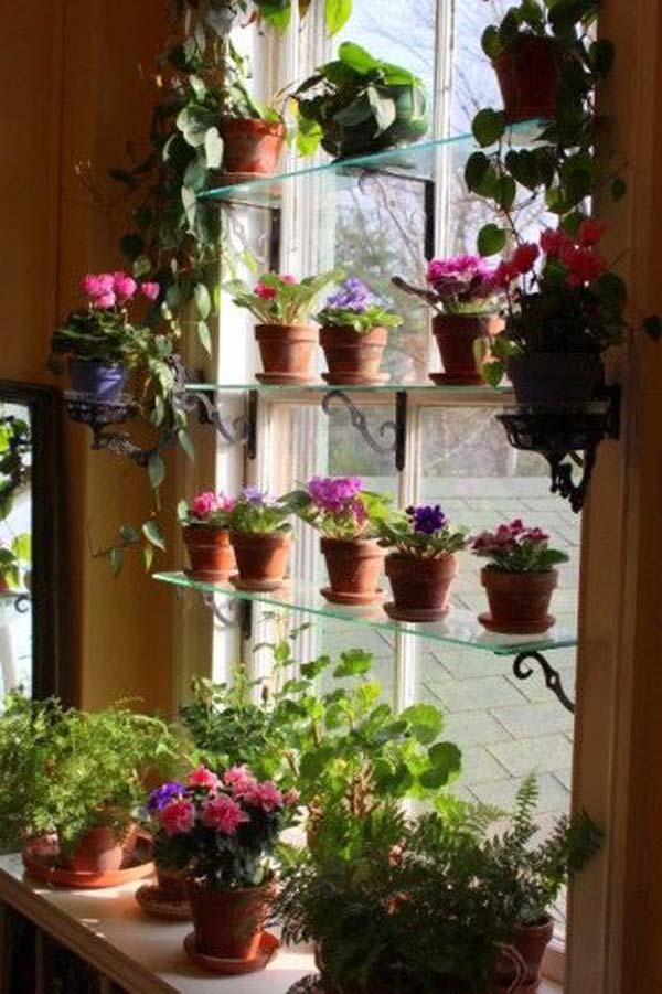 mini garden indoor 14