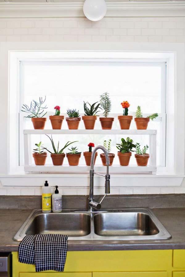 mini garden indoor 18