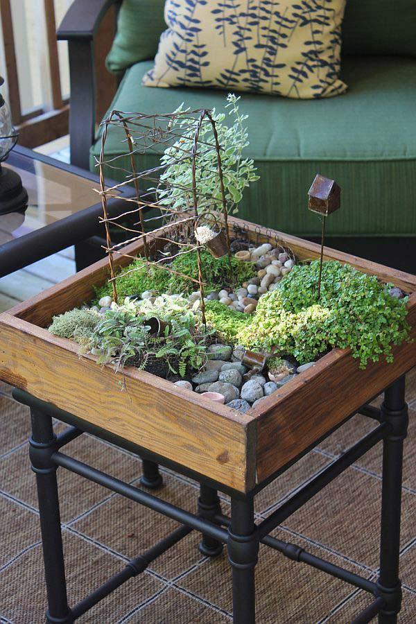 mini garden indoor 25