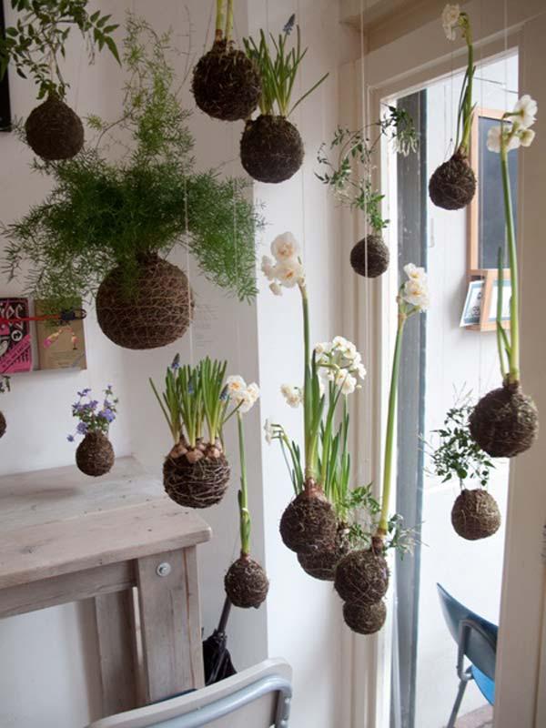 Desain Mini Garden Indoor : Awesome Indoor Mini Garden Ideas