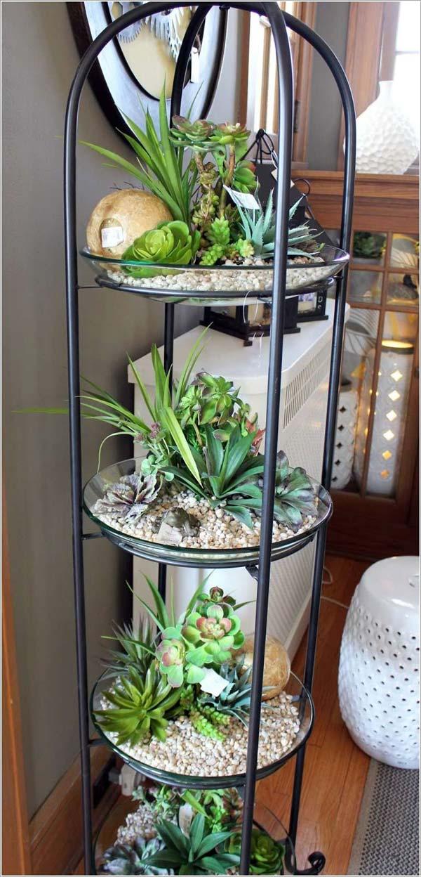 mini garden indoor 8