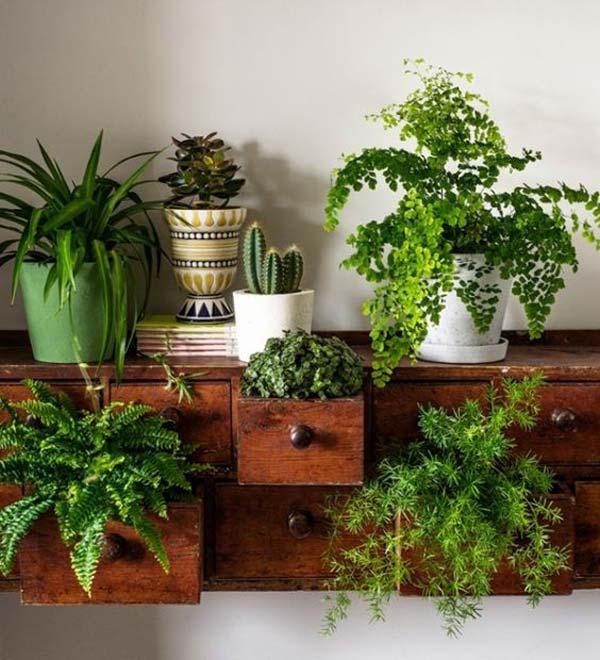Mini Garden Ideas mason jar plants Awesome Indoor Mini Garden Ideas