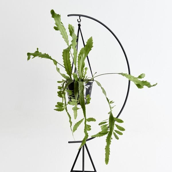 modern-planter-stands-7