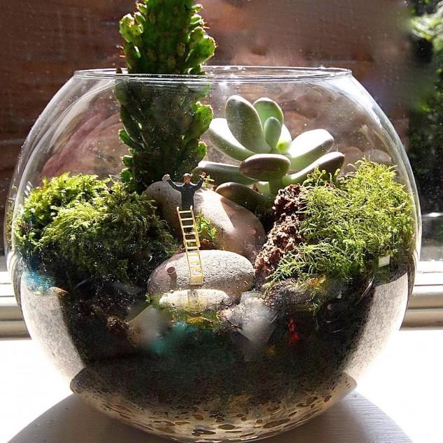original mini world terrarium kit window cleaner