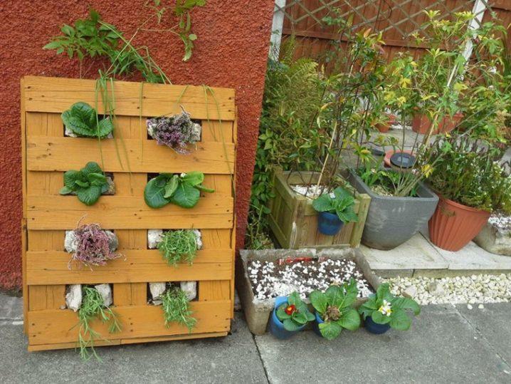pallets-planters-5