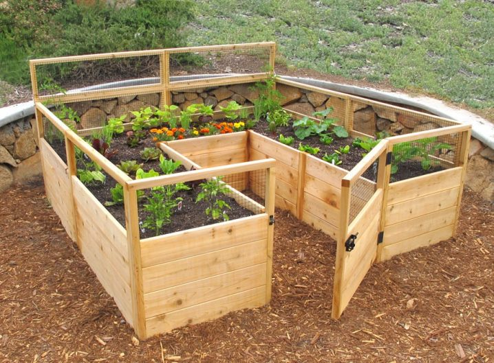 shaped raised bed gardens 4