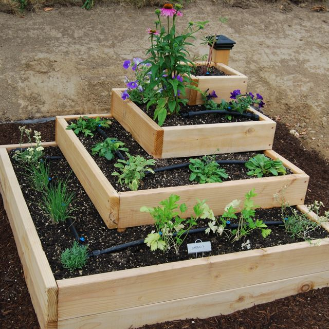 shaped raised bed gardens 5