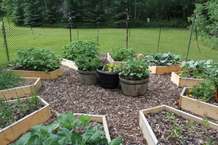 shaped raised bed gardens 9