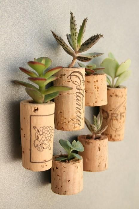 Awesome Succulent Planters