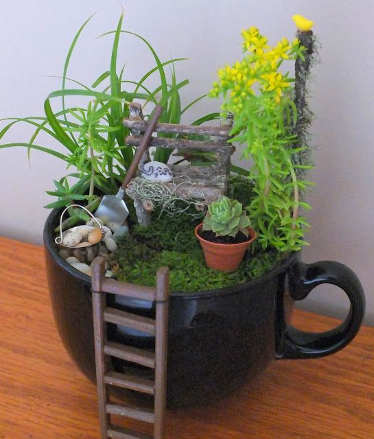 teacup garden ideas 15