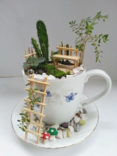 teacup garden ideas 6