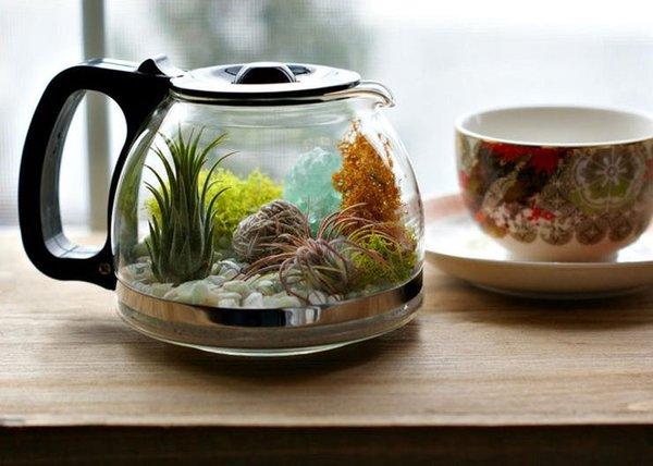 terrarium ideas 10