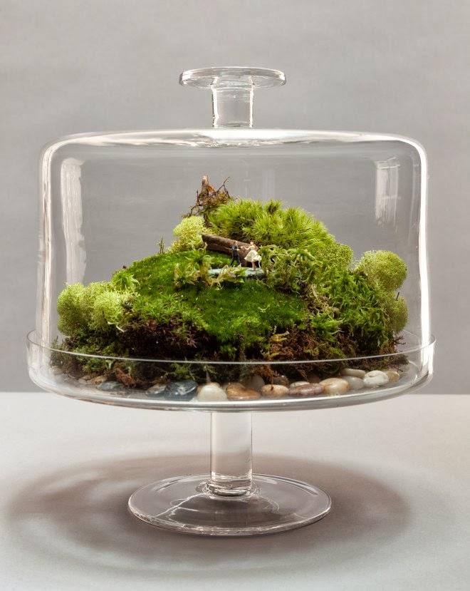 terrarium ideas 11