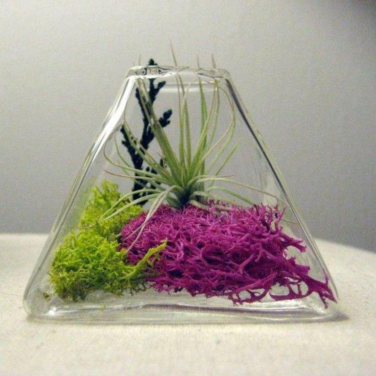 terrarium ideas 13