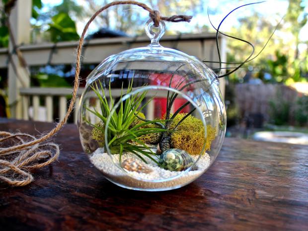 terrarium ideas 14
