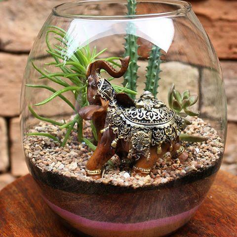 terrarium ideas 4