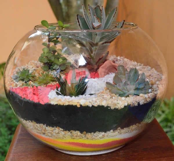 terrarium ideas 5